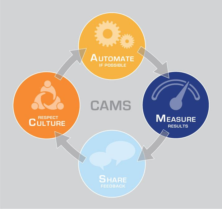 CAMS-graphic_V2